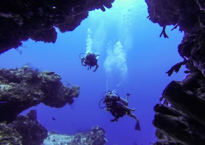 Diving Tours Playa del Carmen, Diving Courses Playa del Carmen, PADI Courses Playa del Carmen